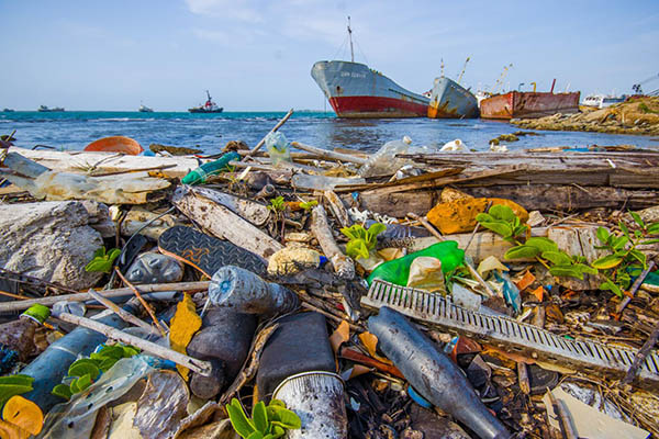 Poluição do plástico é desafio para Dia Mundial do Meio Ambiente