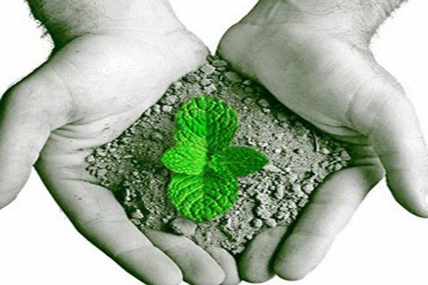 4ª Pré-Conferência de Meio Ambiente acontece na quinta-feira