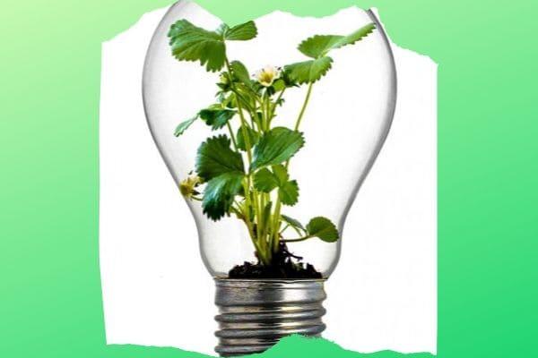 Evento reúne ideias de redução de geração de resíduos em Contagem