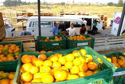 Frutas influenciam queda do preço de hortigranjeiros.