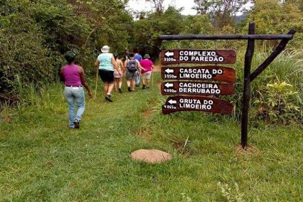 Projeto Ecofolia está com inscrições abertas
