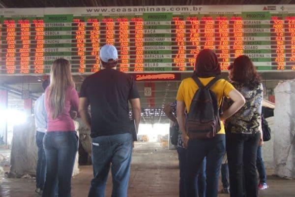 Oferta de hortigranjeiros aumentou no entreposto de Contagem da CeasaMinas