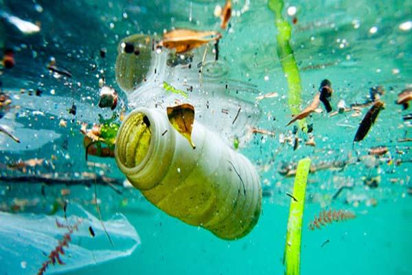 Cerca de 80% dos resíduos encontrados nos oceanos vêm das cidades
