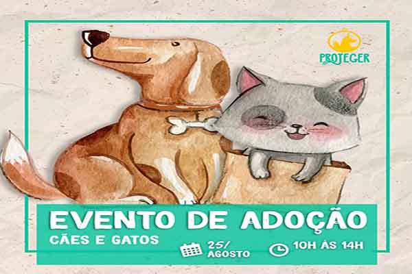 ONG de Contagem promove evento de adoção animal