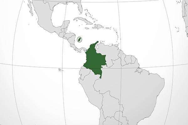 Dissidentes das Farc têm vínculos com facções criminosas brasileiras