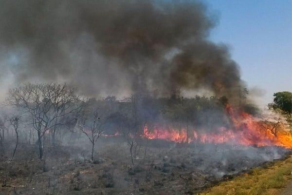 Incêndio de grandes proporções atinge Parque do Ibitipoca