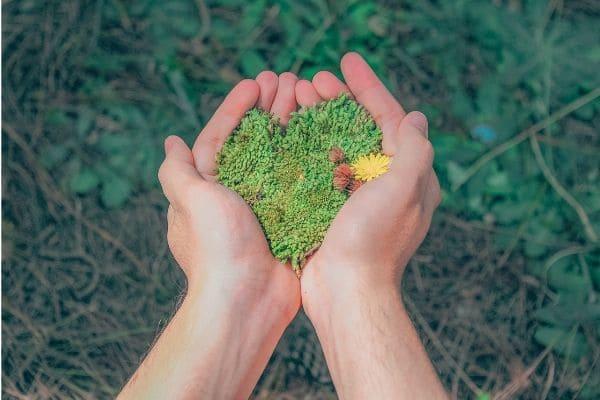 Semana do Meio Ambiente tem programação gratuita em Contagem
