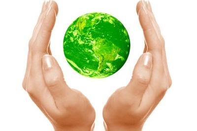 Secretaria do Meio Ambiente lança Biblioteca Ambiental