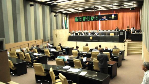 Governo de coalizão, governo sem oposição